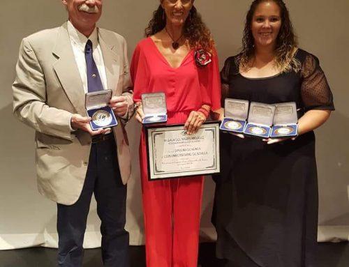 Medallas de plata, bronce y diploma de honor